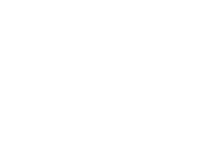 Lil' Tulips